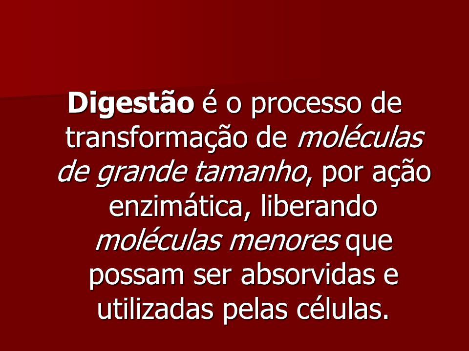 Digestão é o processo de transformação de moléculas de grande tamanho, por ação enzimática, liberando moléculas menores que possam ser absorvidas e ut