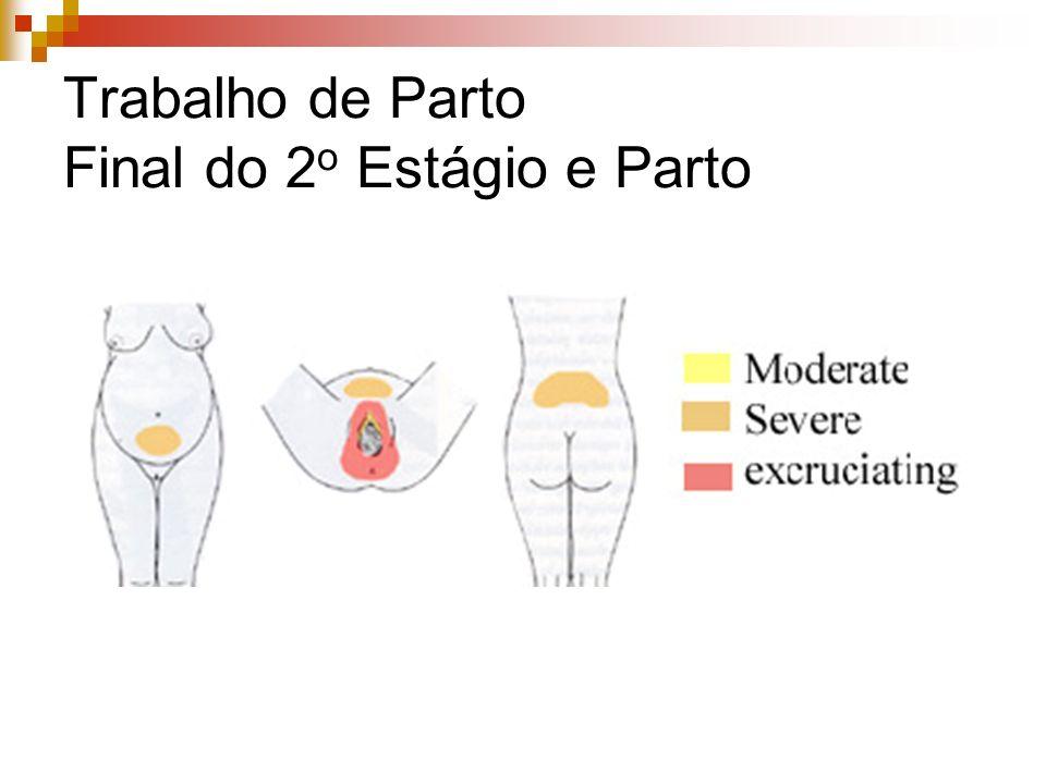 Analgesia Ideal Mobilidade Fora do centro cirúrgico Sem acompanhamento intensivo Equipamentos simples Baixos riscos materno e fetal Potência adequada Efeitos colaterais pouco significativos Não interferir com o trabalho de parto