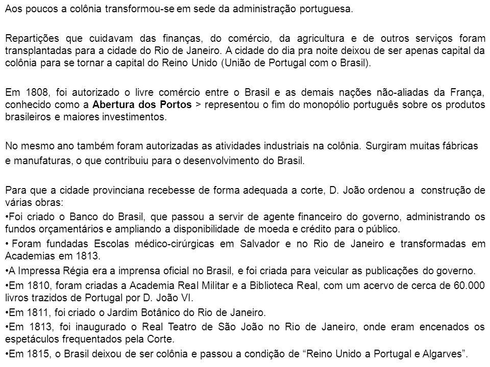 Aos poucos a colônia transformou-se em sede da administração portuguesa. Repartições que cuidavam das finanças, do comércio, da agricultura e de outro