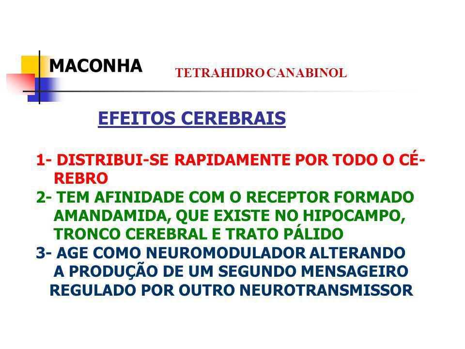 EFEITOS CEREBRAIS 1- DISTRIBUI-SE RAPIDAMENTE POR TODO O CÉ- REBRO 2- TEM AFINIDADE COM O RECEPTOR FORMADO AMANDAMIDA, QUE EXISTE NO HIPOCAMPO, TRONCO