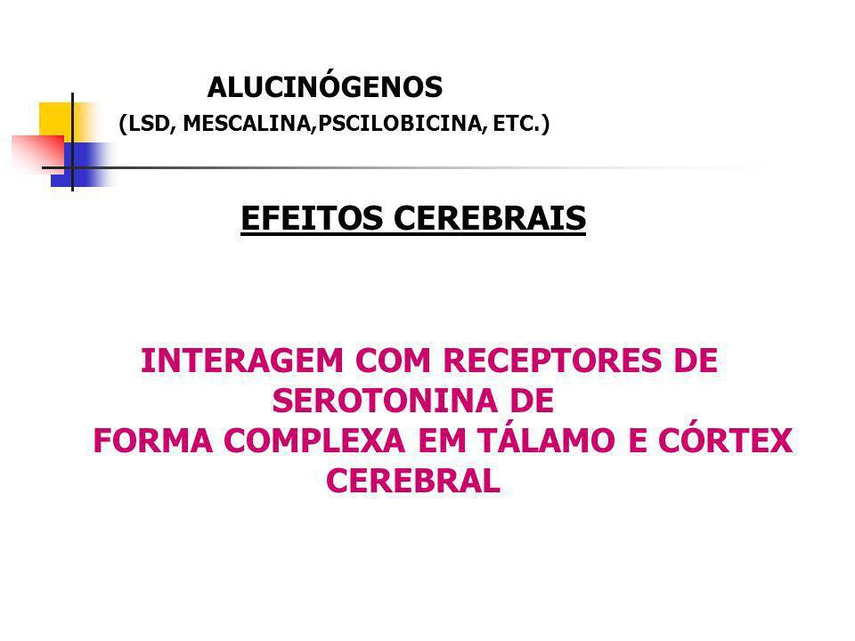 ALUCINÓGENOS (LSD, MESCALINA,PSCILOBICINA, ETC.) EFEITOS CEREBRAIS INTERAGEM COM RECEPTORES DE SEROTONINA DE FORMA COMPLEXA EM TÁLAMO E CÓRTEX CEREBRA
