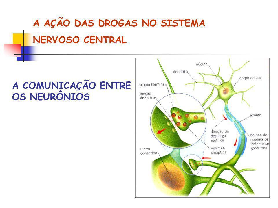 A AÇÃO DAS DROGAS NO SISTEMA NERVOSO CENTRAL A COMUNICAÇÃO ENTRE OS NEURÔNIOS