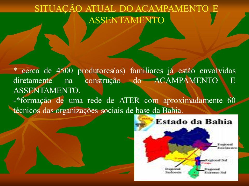 SITUAÇÃO ATUAL DO ACAMPAMENTO E ASSENTAMENTO * cerca de 4500 produtores(as) familiares já estão envolvidas diretamente na construção do ACAMPAMENTO E ASSENTAMENTO.