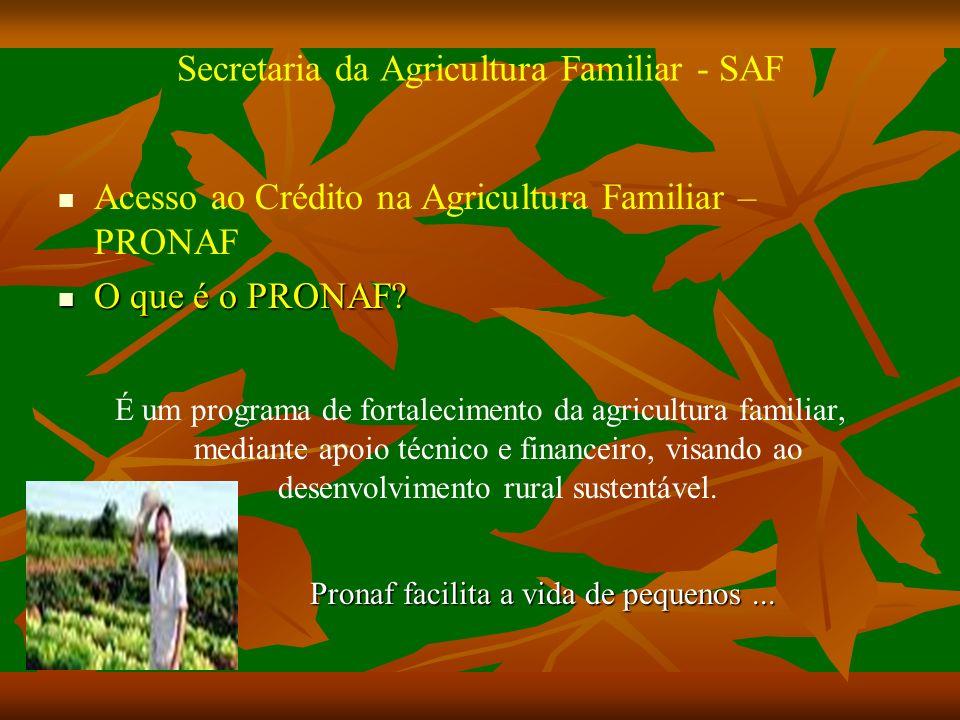 Secretaria da Agricultura Familiar - SAF Acesso ao Crédito na Agricultura Familiar – PRONAF O que é o PRONAF.