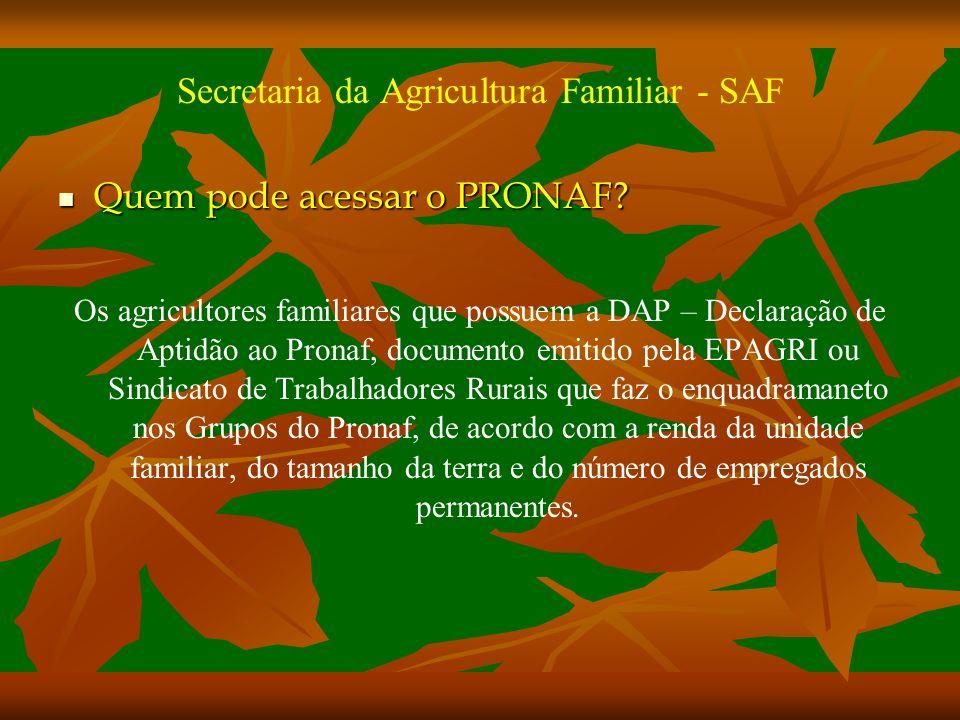 Secretaria da Agricultura Familiar - SAF Quem pode acessar o PRONAF.