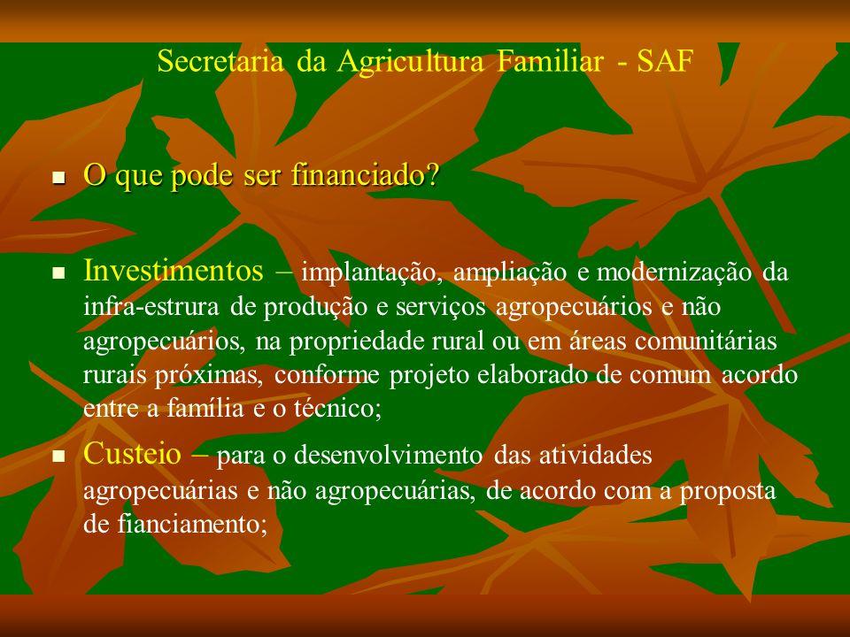 Secretaria da Agricultura Familiar - SAF O que pode ser financiado.