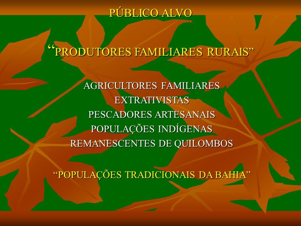 PÚBLICO ALVO PRODUTORES FAMILIARES RURAIS AGRICULTORES FAMILIARES EXTRATIVISTAS PESCADORES ARTESANAIS POPULAÇÕES INDÍGENAS REMANESCENTES DE QUILOMBOS POPULAÇÕES TRADICIONAIS DA BAHIA
