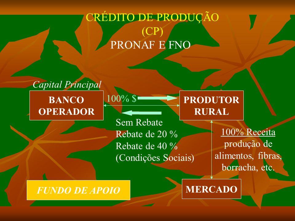 BANCO OPERADOR PRODUTOR RURAL MERCADO 100% $ CRÉDITO DE PRODUÇÃO (CP) PRONAF E FNO 100% Receita produção de alimentos, fibras, borracha, etc.