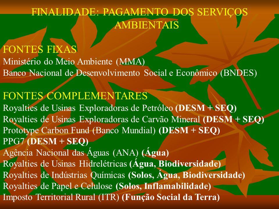 FINALIDADE: PAGAMENTO DOS SERVIÇOS AMBIENTAIS FONTES FIXAS Ministério do Meio Ambiente (MMA) Banco Nacional de Desenvolvimento Social e Econômico (BNDES) FONTES COMPLEMENTARES Royalties de Usinas Exploradoras de Petróleo (DESM + SEQ) Royalties de Usinas Exploradoras de Carvão Mineral (DESM + SEQ) Prototype Carbon Fund (Banco Mundial) (DESM + SEQ) PPG7 (DESM + SEQ) Agência Nacional das Águas (ANA) (Água) Royalties de Usinas Hidrelétricas (Água, Biodiversidade) Royalties de Indústrias Químicas (Solos, Água, Biodiversidade) Royalties de Papel e Celulose (Solos, Inflamabilidade) Imposto Territorial Rural (ITR) (Função Social da Terra)