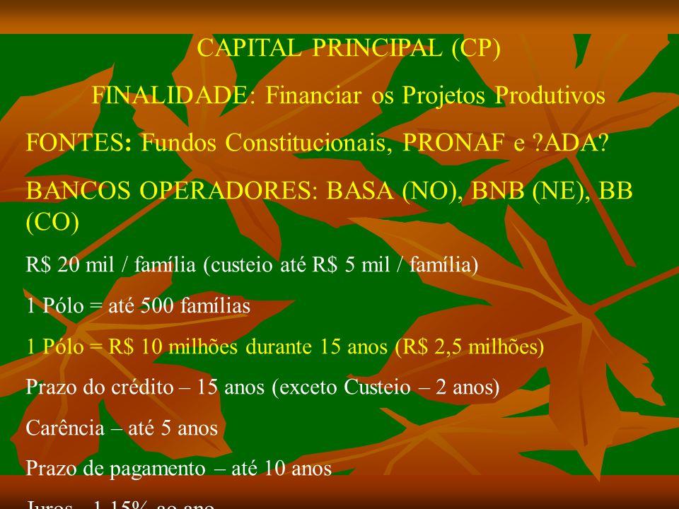CAPITAL PRINCIPAL (CP) FINALIDADE: Financiar os Projetos Produtivos FONTES: Fundos Constitucionais, PRONAF e ?ADA.