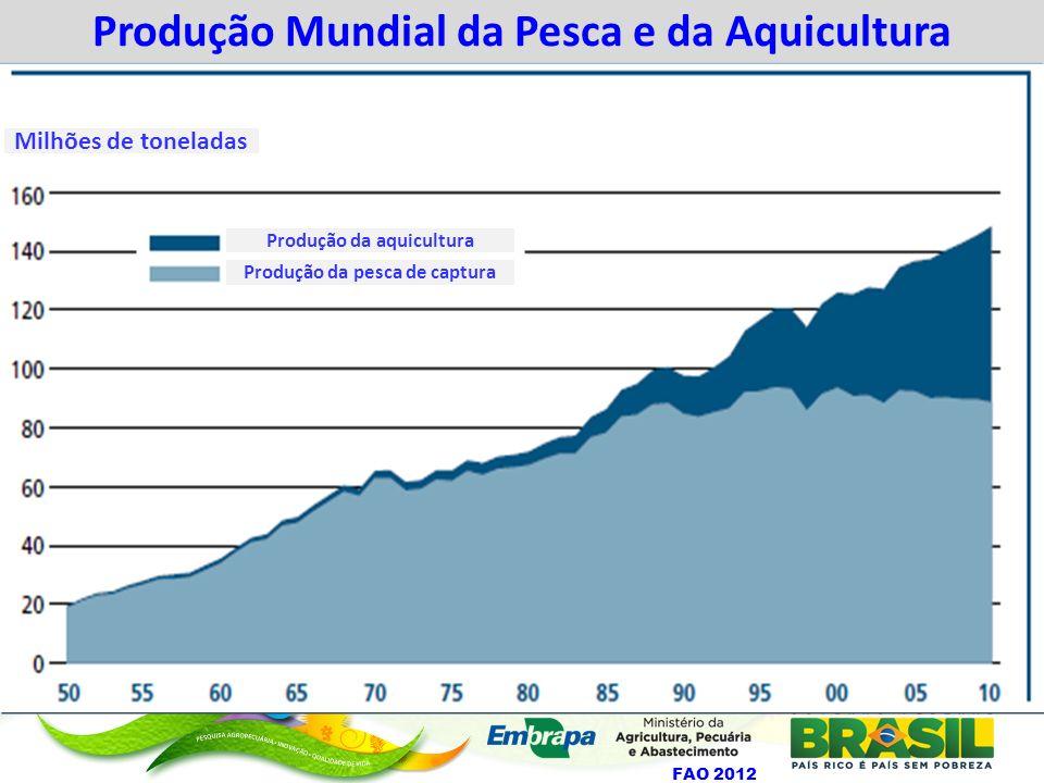 Tendências do estado das populações de peixes marinhos (1974 a 2006) FAO (2008) % de Populações Avaliadas Sub+Moderadamente exploradas Plenamente exploradas Super-exploradas+Esgotadas+Em Recuperação