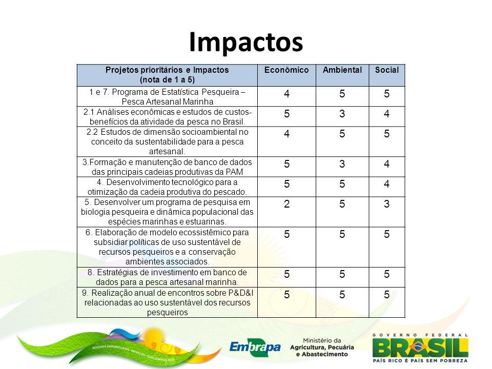 Impactos Projetos prioritários e Impactos (nota de 1 a 5) EconômicoAmbientalSocial 1 e 7. Programa de Estatística Pesqueira – Pesca Artesanal Marinha