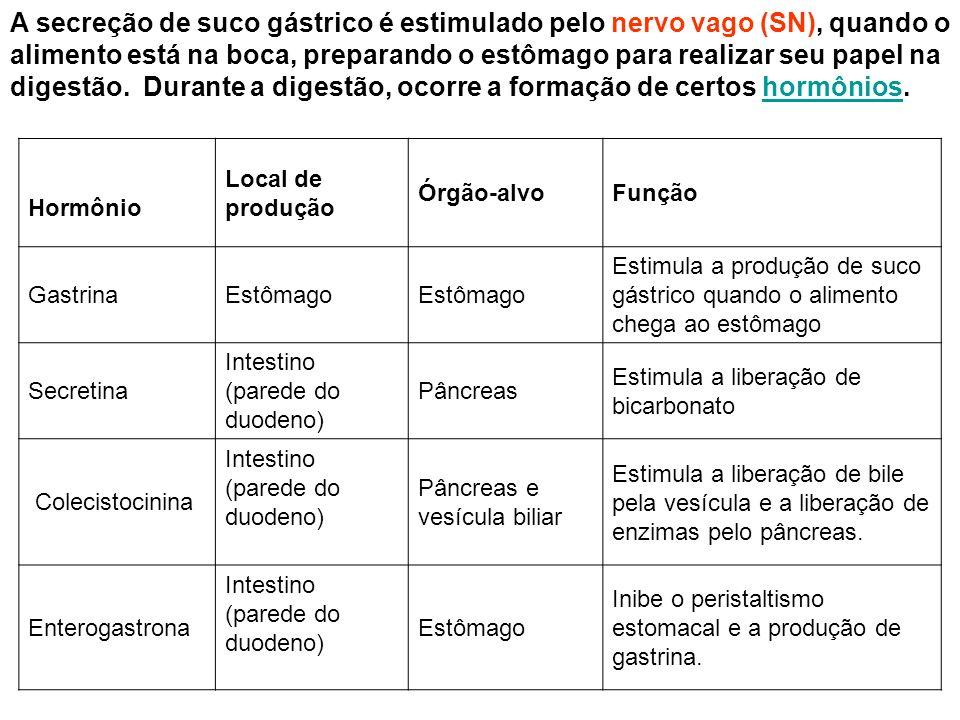 A secreção de suco gástrico é estimulado pelo nervo vago (SN), quando o alimento está na boca, preparando o estômago para realizar seu papel na digest