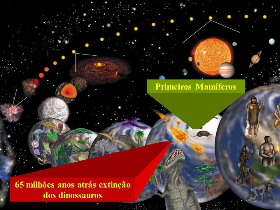 A Terra não é o ponto de partida da primeira encarnação humana. O período de humanidade começa, em geral, nos mundos mais inferiores. Essa, entretanto
