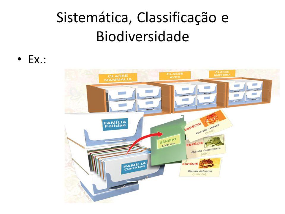 Ex.: Sistemática, Classificação e Biodiversidade
