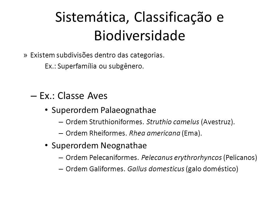 » Existem subdivisões dentro das categorias. Ex.: Superfamília ou subgênero. – Ex.: Classe Aves Superordem Palaeognathae – Ordem Struthioniformes. Str