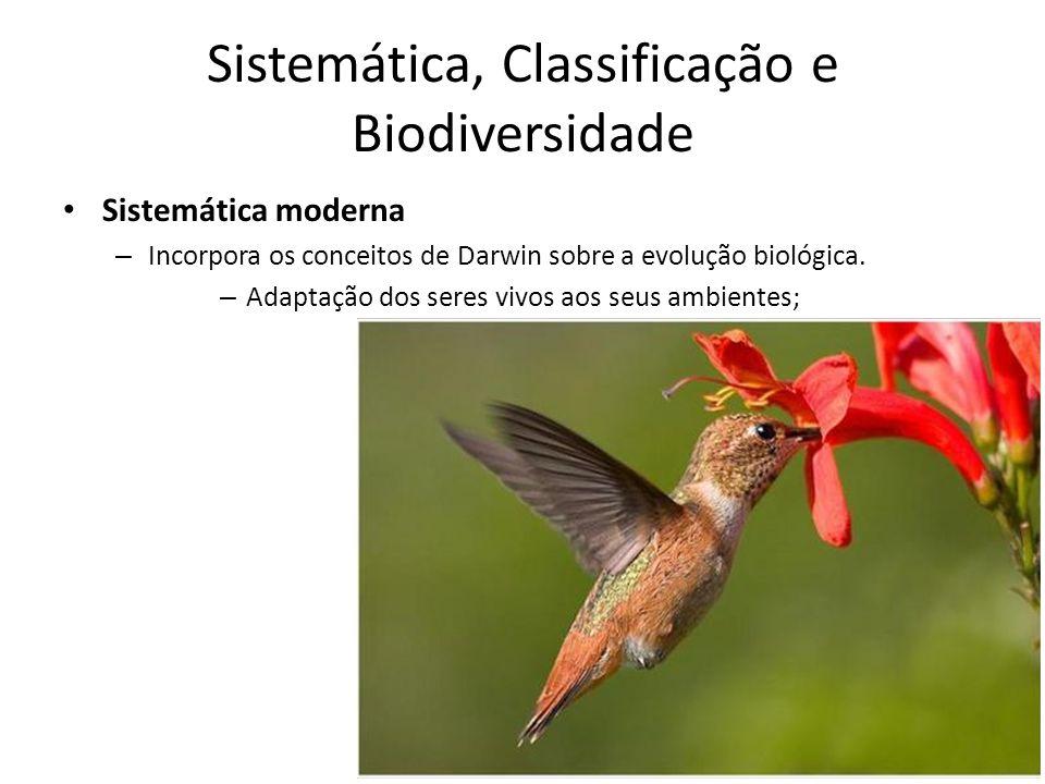 Sistemática moderna – Incorpora os conceitos de Darwin sobre a evolução biológica. – Adaptação dos seres vivos aos seus ambientes; Sistemática, Classi