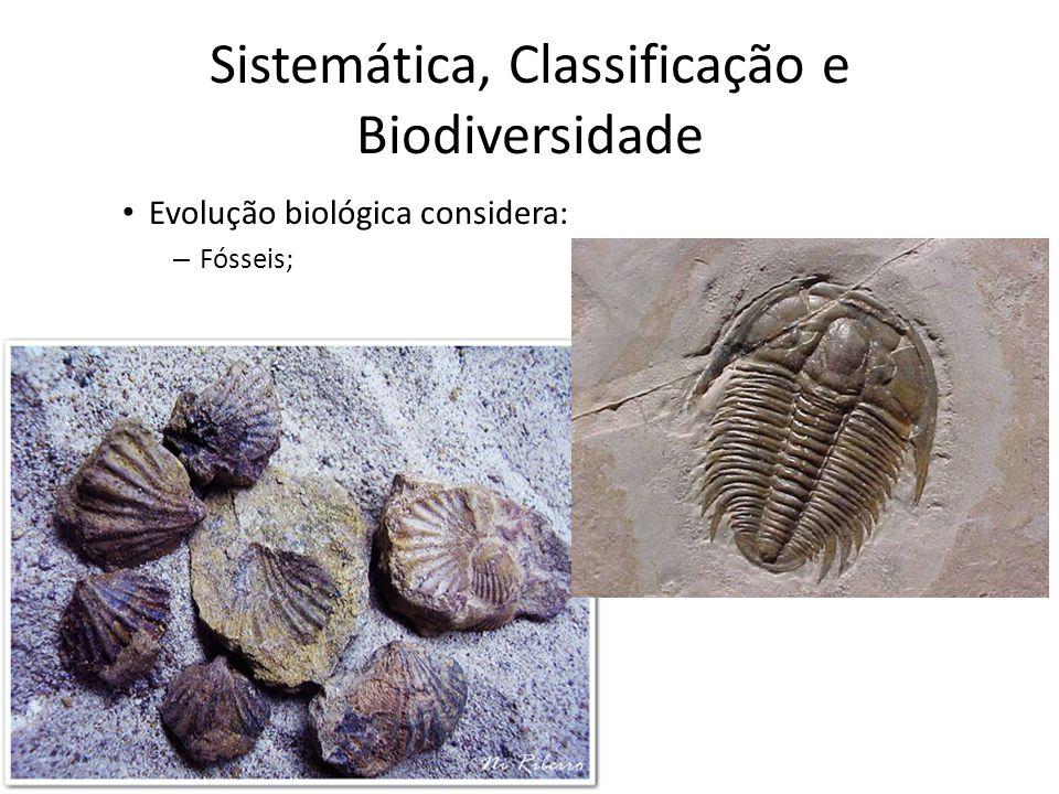 Evolução biológica considera: – Fósseis; Sistemática, Classificação e Biodiversidade