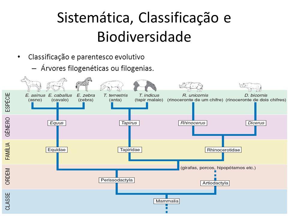 Classificação e parentesco evolutivo – Árvores filogenéticas ou filogenias. Sistemática, Classificação e Biodiversidade