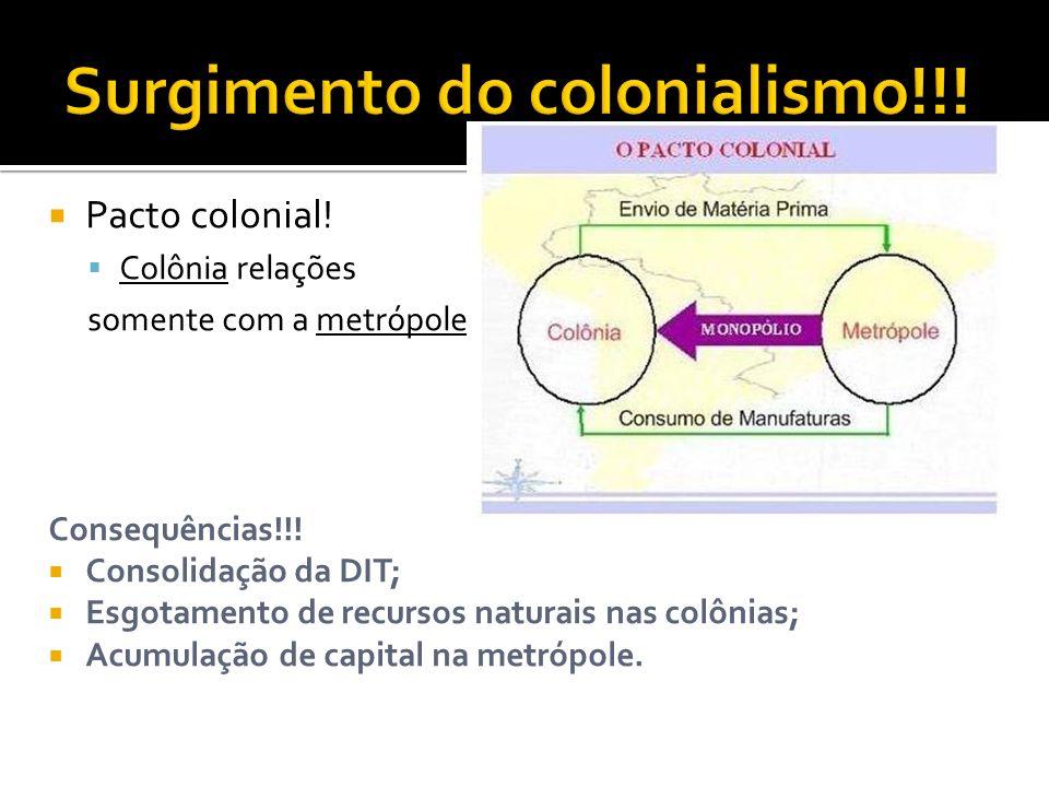 Pacto colonial! Colônia relações somente com a metrópole Consequências!!! Consolidação da DIT; Esgotamento de recursos naturais nas colônias; Acumulaç