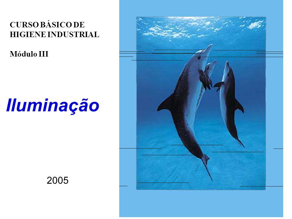 Iluminação CURSO BÁSICO DE HIGIENE INDUSTRIAL Módulo III 2005