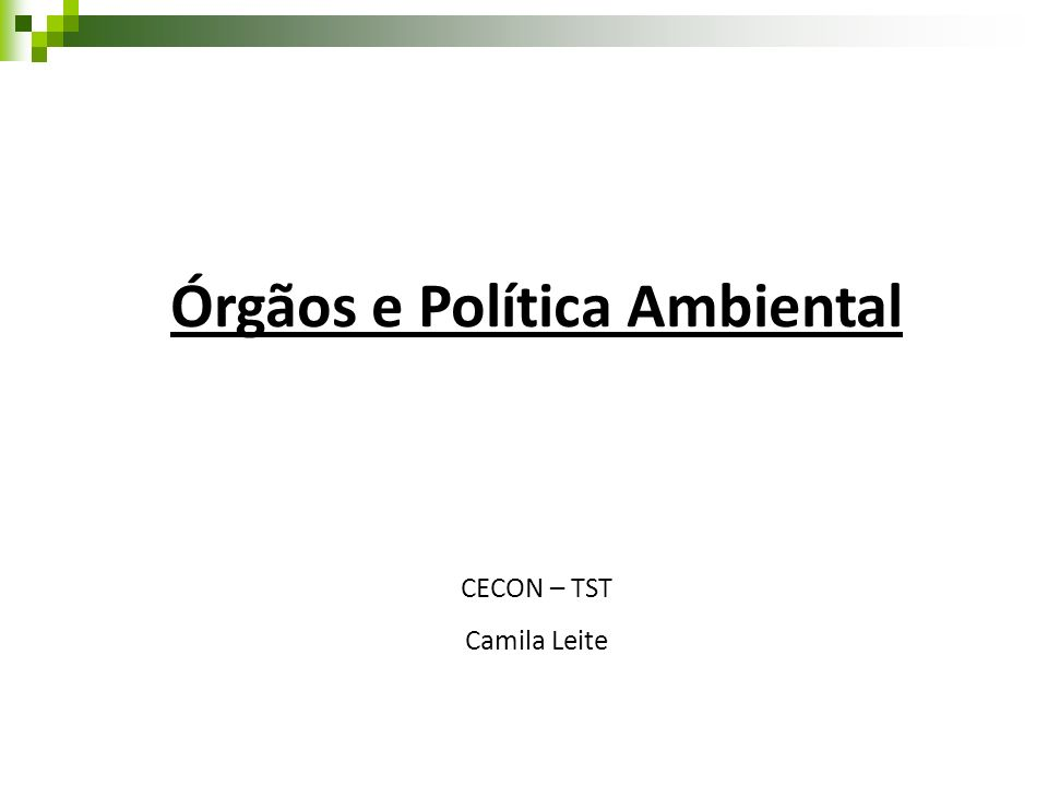 Órgãos e Política Ambiental CECON – TST Camila Leite