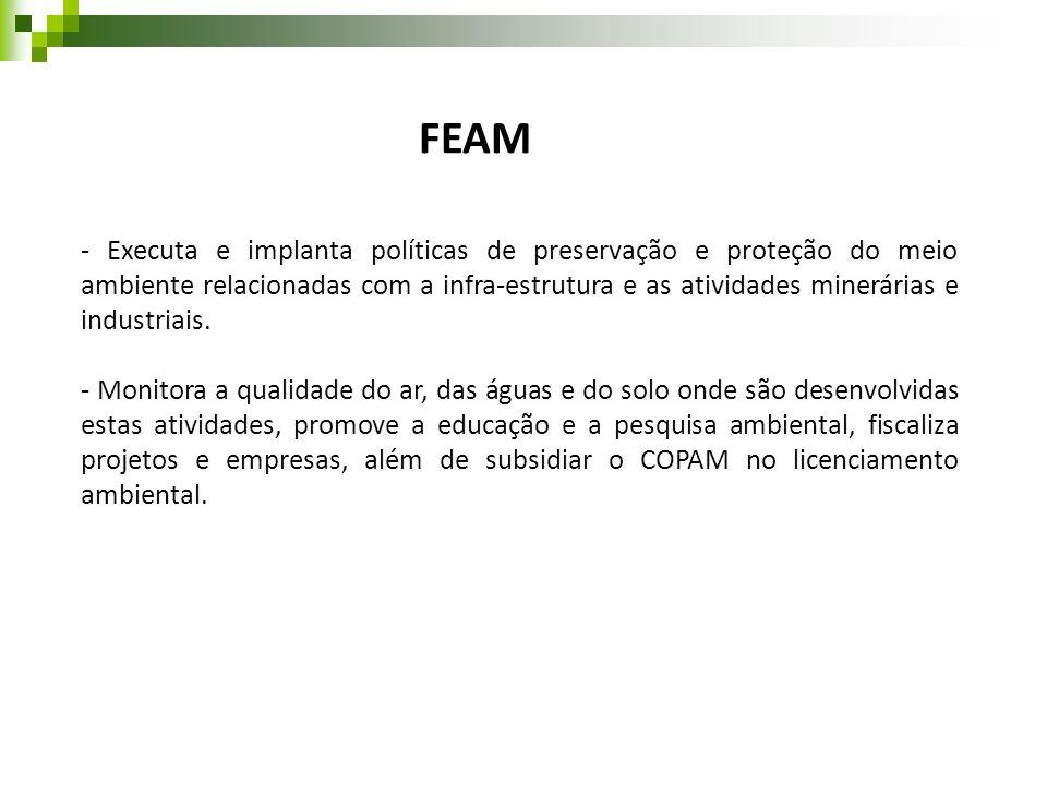 FEAM - Executa e implanta políticas de preservação e proteção do meio ambiente relacionadas com a infra-estrutura e as atividades minerárias e industr