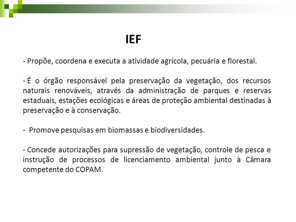 IEF - Propõe, coordena e executa a atividade agrícola, pecuária e florestal. - É o órgão responsável pela preservação da vegetação, dos recursos natur