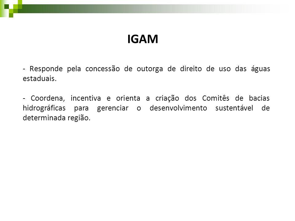 IGAM - Responde pela concessão de outorga de direito de uso das águas estaduais. - Coordena, incentiva e orienta a criação dos Comitês de bacias hidro