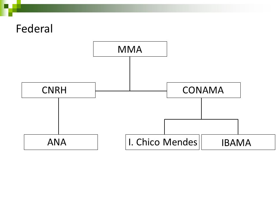Federal CNRH MMA CONAMA ANAI. Chico Mendes IBAMA