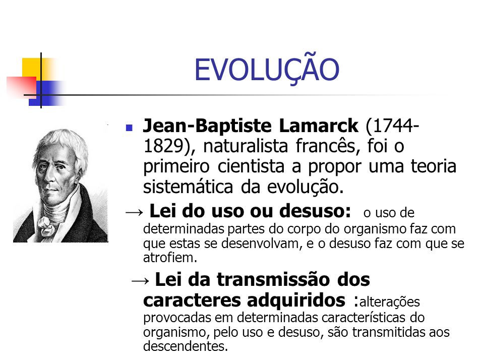 EVOLUÇÃO Jean-Baptiste Lamarck (1744- 1829), naturalista francês, foi o primeiro cientista a propor uma teoria sistemática da evolução. Lei do uso ou