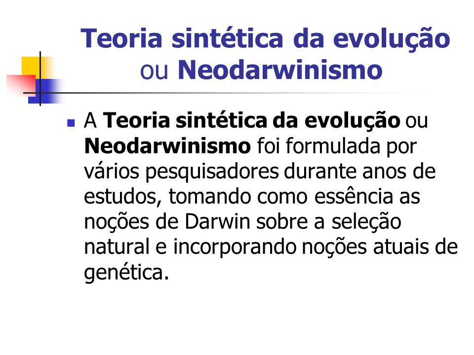 Teoria sintética da evolução ou Neodarwinismo A Teoria sintética da evolução ou Neodarwinismo foi formulada por vários pesquisadores durante anos de e