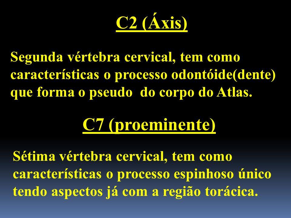 C2 (Áxis) Segunda vértebra cervical, tem como características o processo odontóide(dente) que forma o pseudo do corpo do Atlas. C7 (proeminente) Sétim