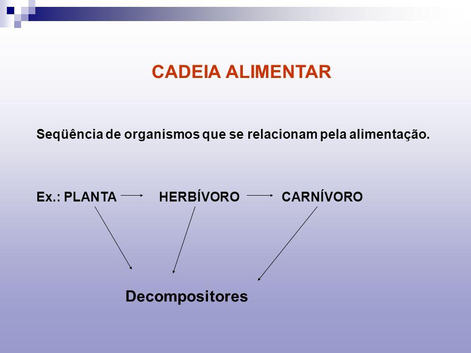 CADEIA ALIMENTAR Seqüência de organismos que se relacionam pela alimentação. Ex.: PLANTA HERBÍVORO CARNÍVORO Decompositores