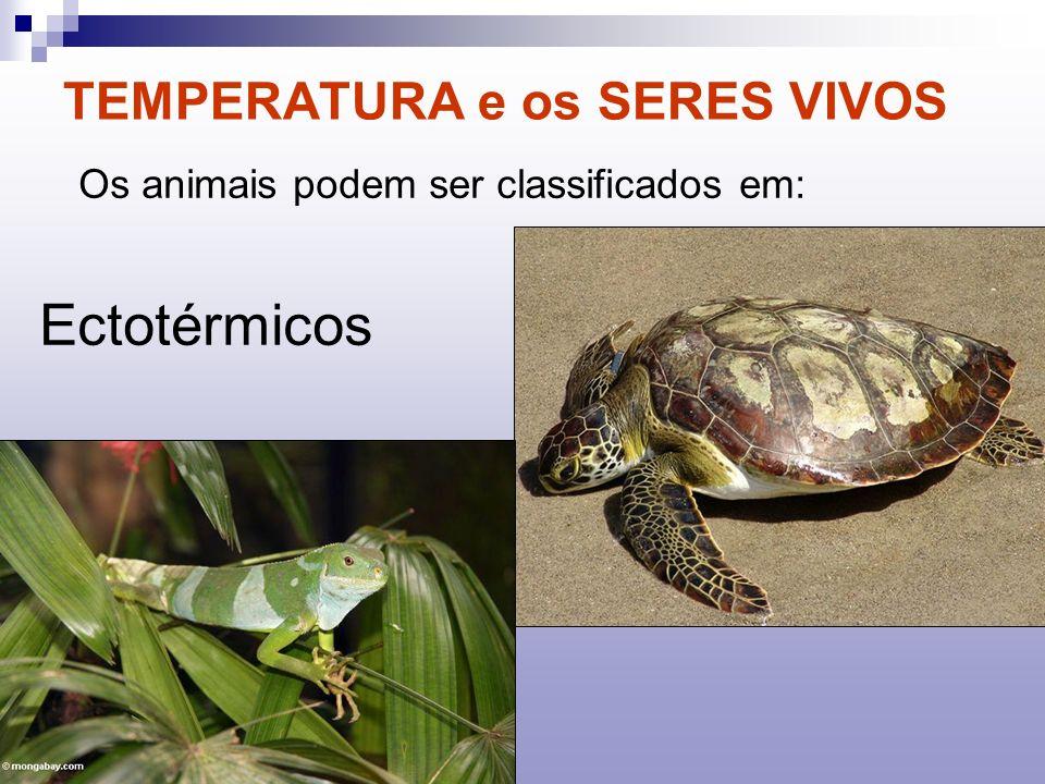 TEMPERATURA e os SERES VIVOS Os animais podem ser classificados em: Ectotérmicos