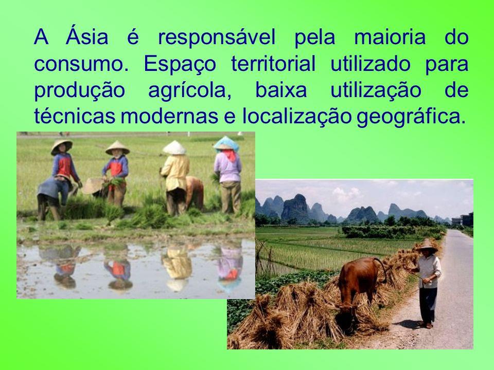 A Ásia é responsável pela maioria do consumo. Espaço territorial utilizado para produção agrícola, baixa utilização de técnicas modernas e localização