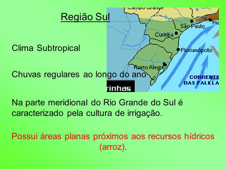 Região Sul Clima Subtropical Chuvas regulares ao longo do ano Na parte meridional do Rio Grande do Sul é caracterizado pela cultura de irrigação. Poss