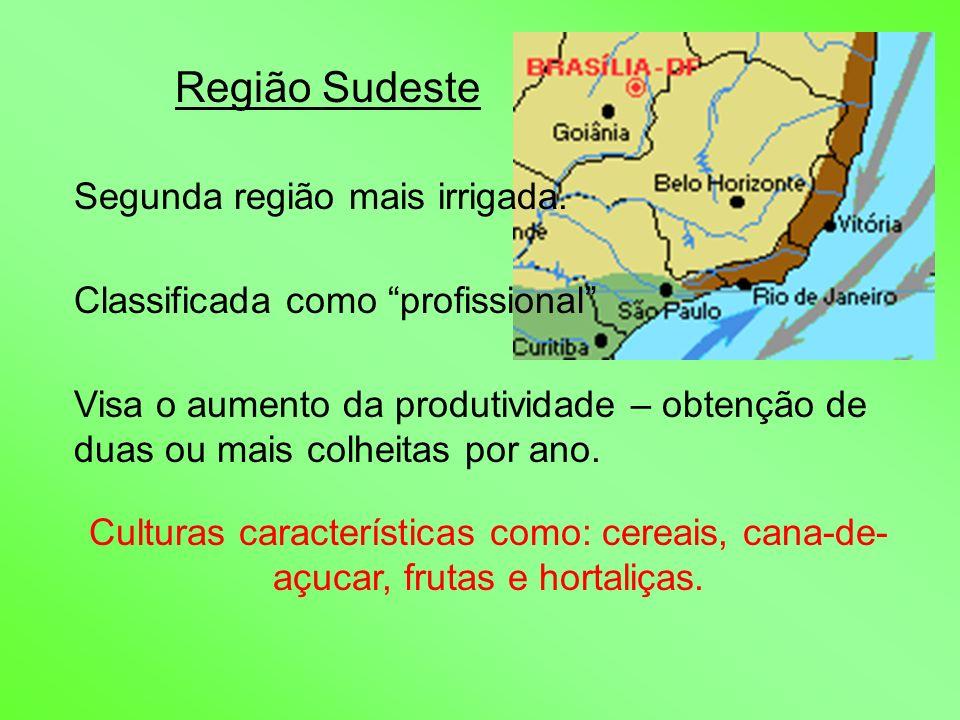 Região Sudeste Segunda região mais irrigada. Classificada como profissional Visa o aumento da produtividade – obtenção de duas ou mais colheitas por a