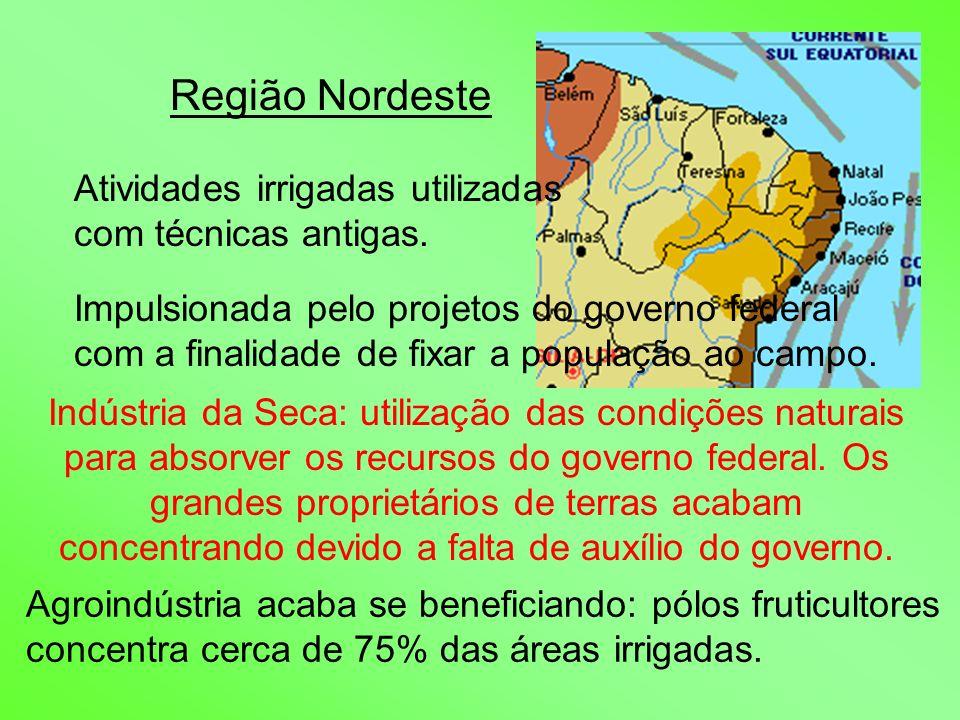 Região Nordeste Atividades irrigadas utilizadas com técnicas antigas. Impulsionada pelo projetos do governo federal com a finalidade de fixar a popula