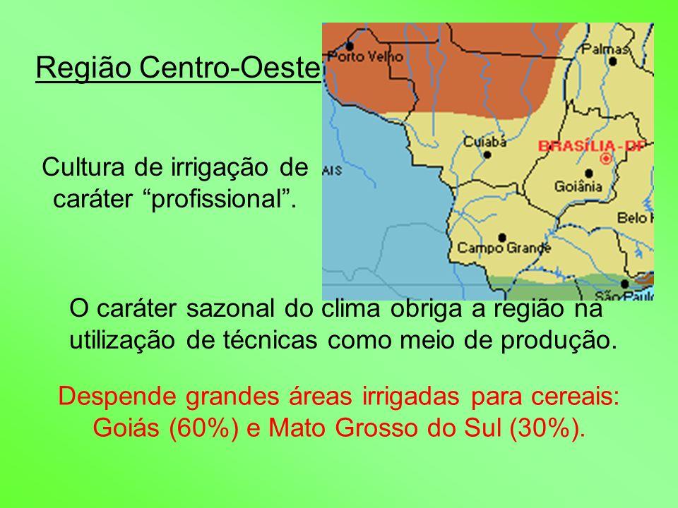 Região Centro-Oeste Cultura de irrigação de caráter profissional. O caráter sazonal do clima obriga a região na utilização de técnicas como meio de pr