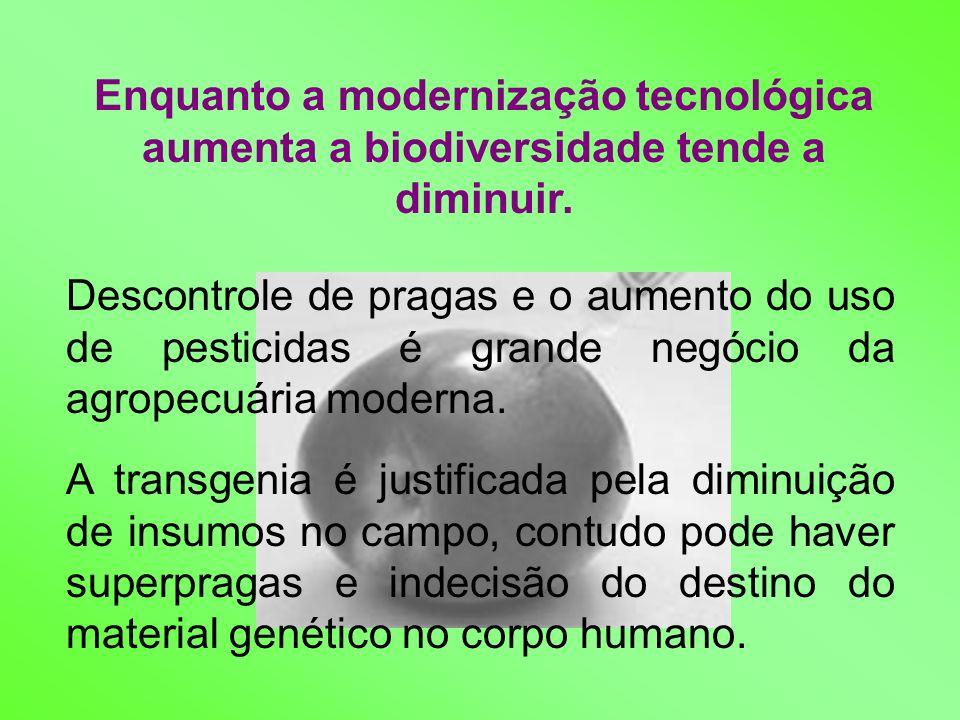 Enquanto a modernização tecnológica aumenta a biodiversidade tende a diminuir. Descontrole de pragas e o aumento do uso de pesticidas é grande negócio