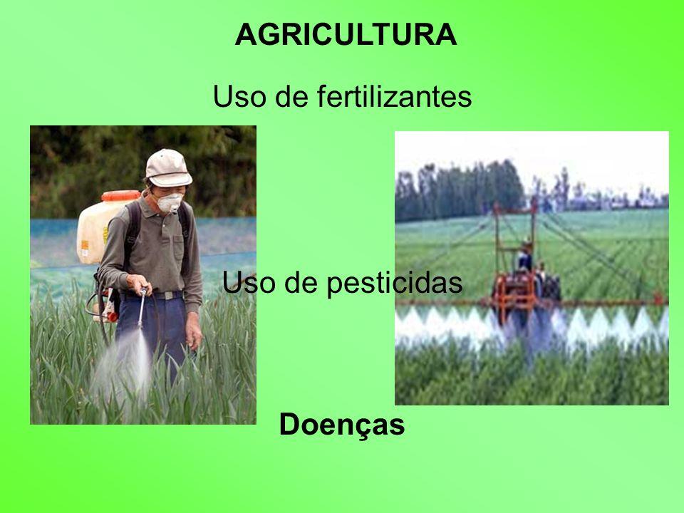 AGRICULTURA Uso de fertilizantes Uso de pesticidas Doenças