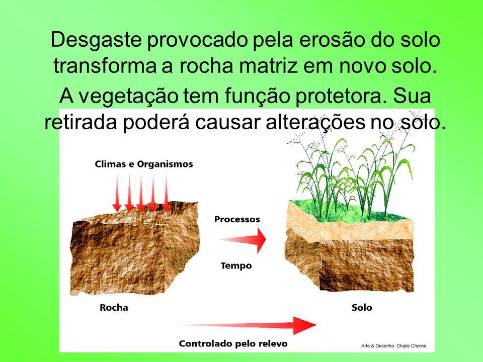 Desgaste provocado pela erosão do solo transforma a rocha matriz em novo solo. A vegetação tem função protetora. Sua retirada poderá causar alterações