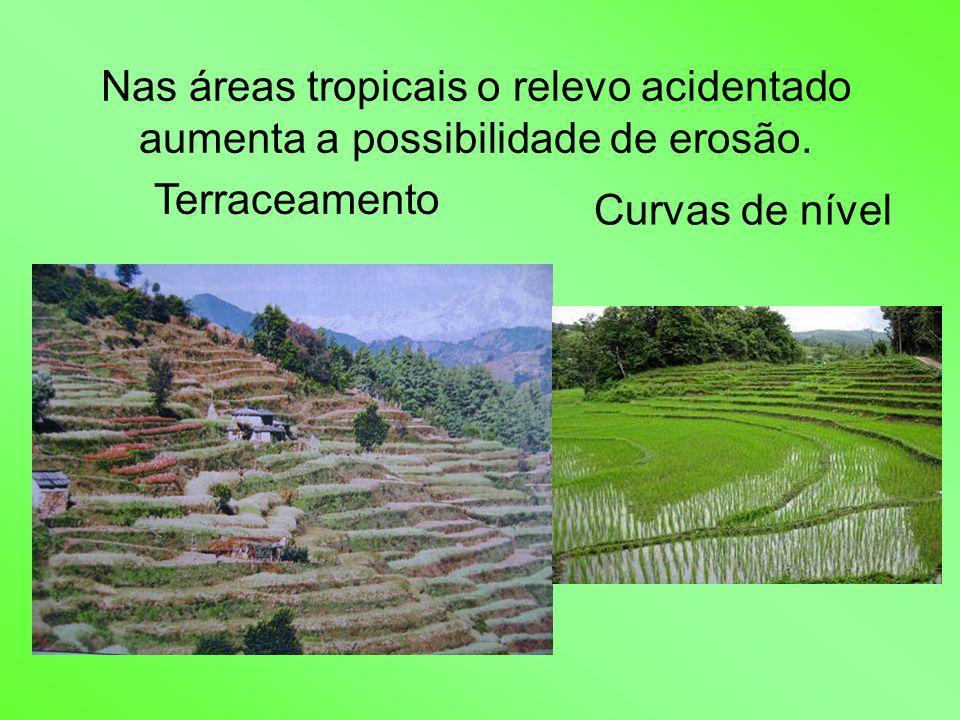Nas áreas tropicais o relevo acidentado aumenta a possibilidade de erosão. Terraceamento Curvas de nível