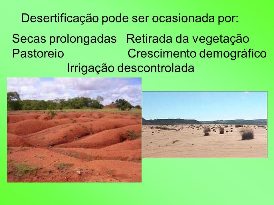Desertificação pode ser ocasionada por: Secas prolongadas Retirada da vegetação Pastoreio Crescimento demográfico Irrigação descontrolada