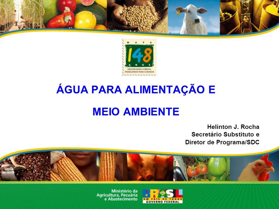 ÁGUA PARA ALIMENTAÇÃO E MEIO AMBIENTE Helinton J. Rocha Secretário Substituto e Diretor de Programa/SDC
