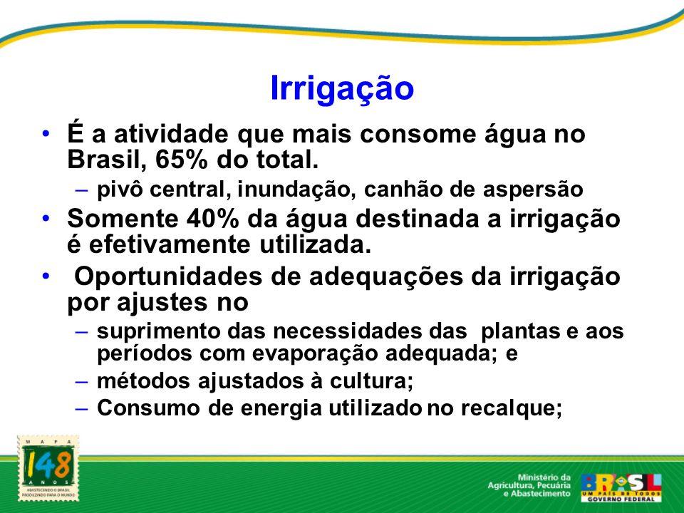 Irrigação É a atividade que mais consome água no Brasil, 65% do total. –pivô central, inundação, canhão de aspersão Somente 40% da água destinada a ir