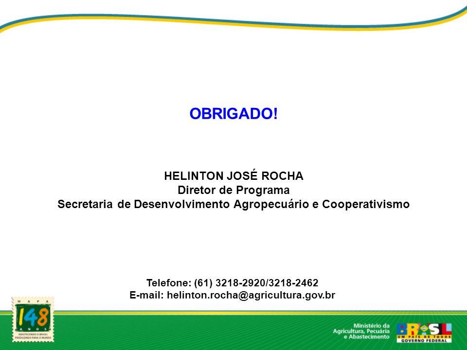 OBRIGADO! HELINTON JOSÉ ROCHA Diretor de Programa Secretaria de Desenvolvimento Agropecuário e Cooperativismo Telefone: (61) 3218-2920/3218-2462 E-mai