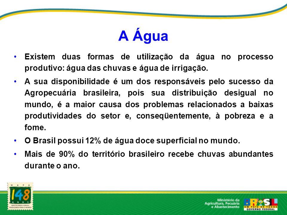 A Água Existem duas formas de utilização da água no processo produtivo: água das chuvas e água de irrigação. A sua disponibilidade é um dos responsáve