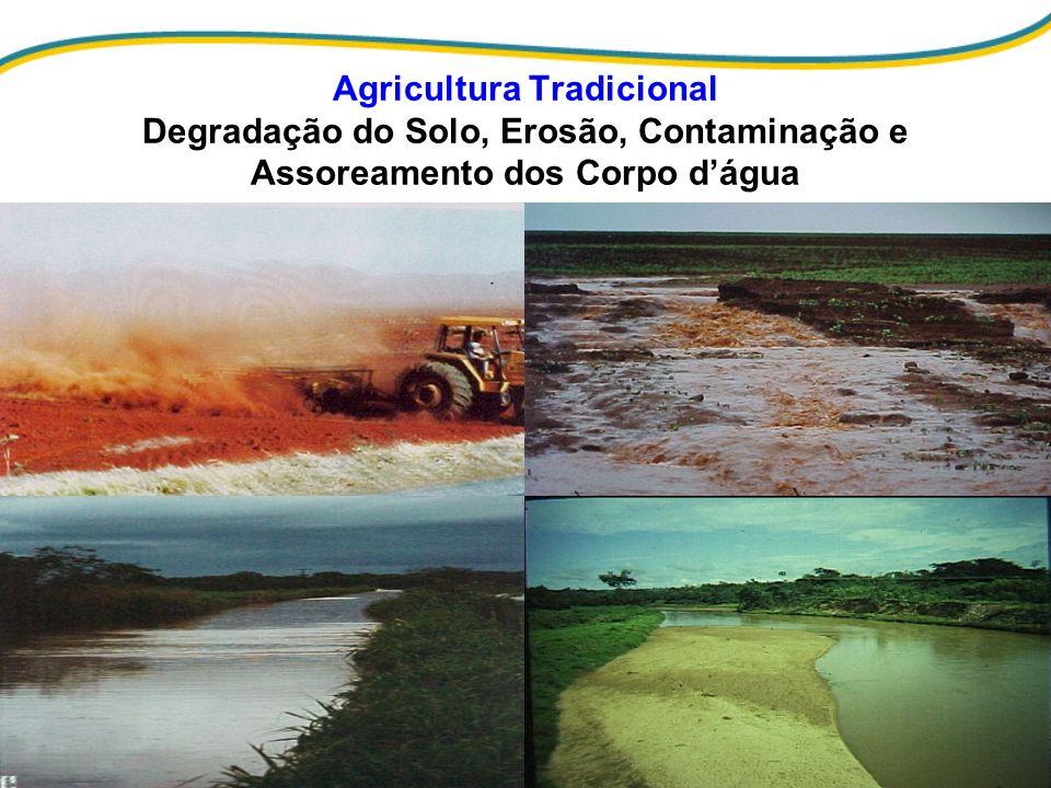 Agricultura Tradicional Degradação do Solo, Erosão, Contaminação e Assoreamento dos Corpo dágua